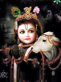 Bal Gopala Krishna......