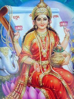 240x320 Mobile Wallpapersmobile Wallpaper Of Maa Lakshmi
