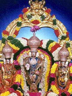 240x320 Mobile Wallpaperstirupati Balaji Mobile Wallpaper